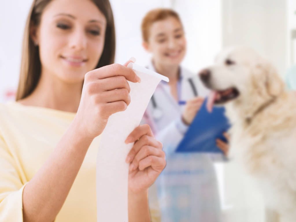 Emitir a nota fiscal é muito importante para o seu estabelecimento veterinário, mas você sabe o porquê?  É fundamental entender a importância para manter sua empresa em conformidade com as leis,…