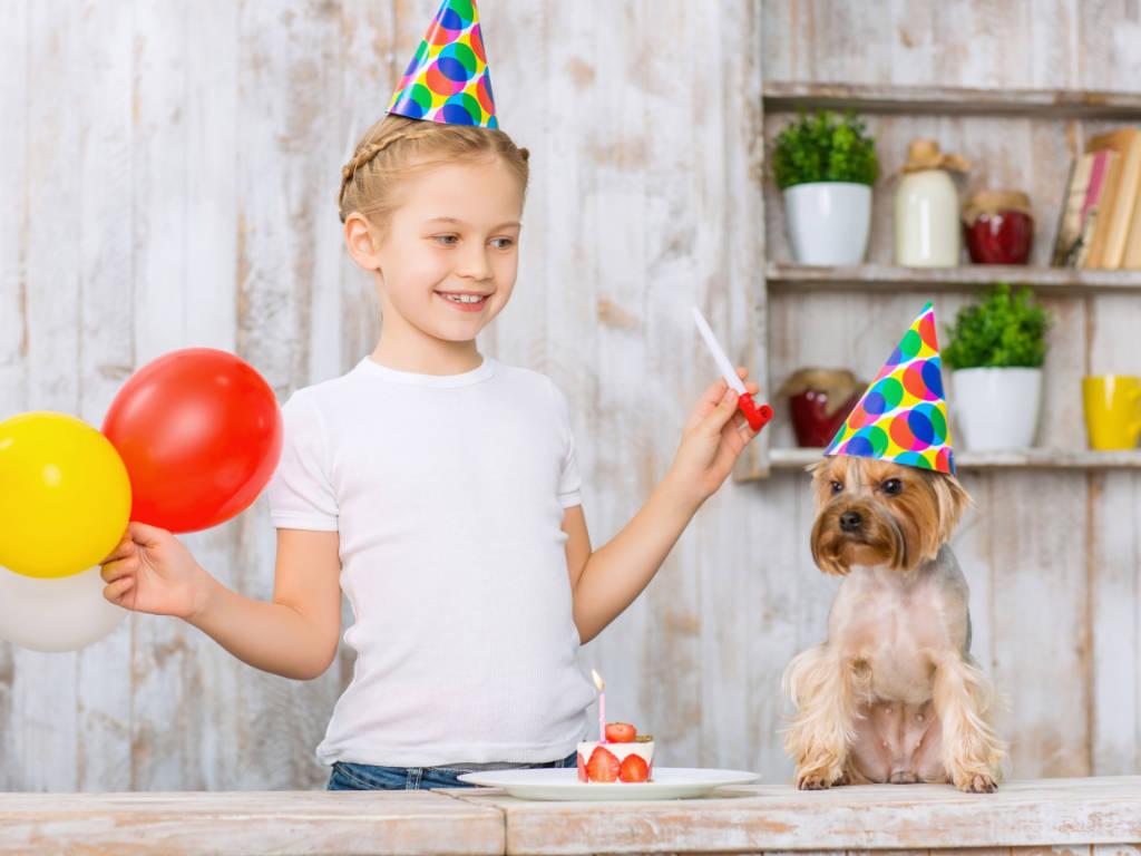 Aqui no blog BensVET temos diversos posts para ajudá-lo a atrair mais clientes para o seu negócio veterinário. Porém, mais importante do que adquirir novos clientes, é conseguir fidelizar os…